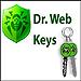 Журнальный ключ для Dr.Web